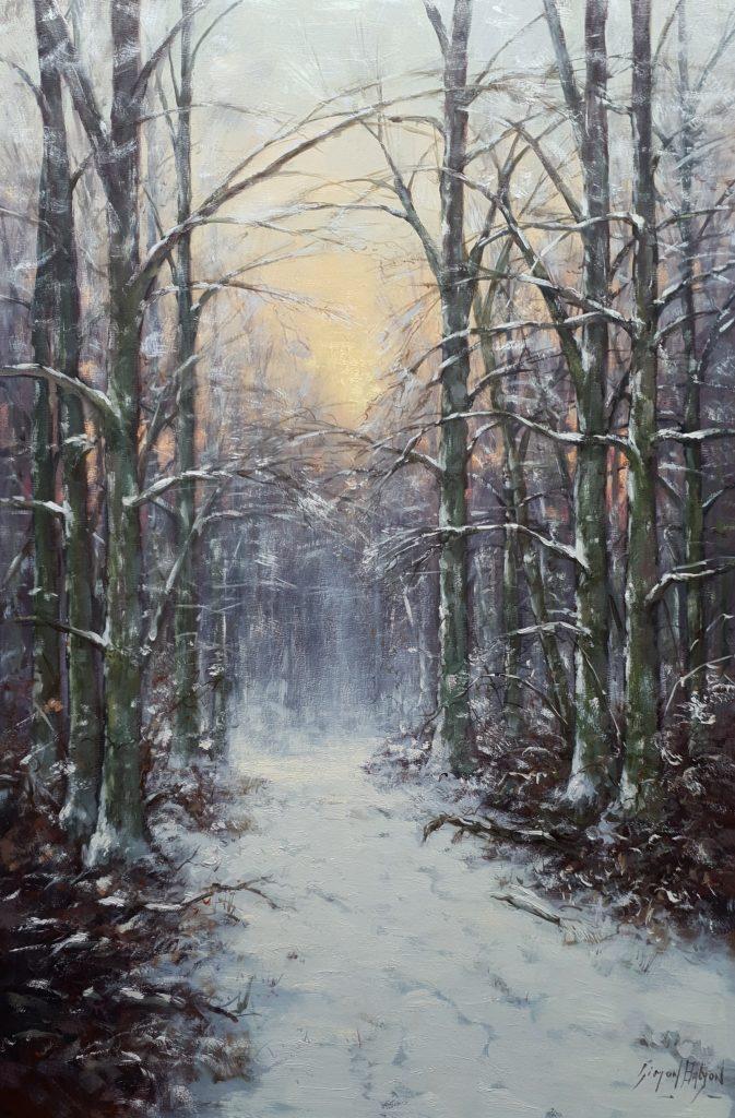 Winters bosgezicht Simon Balyon